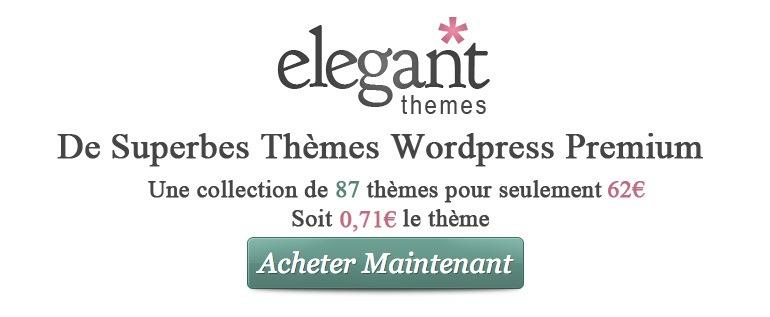 encart-article-elegantthemes