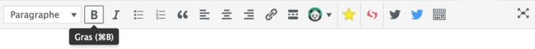 mise en gras wordpress
